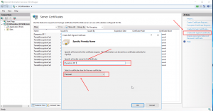 IIS create a self signed certificate